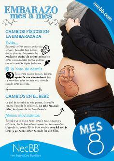 """infografía para pinterest NecBB """"El embarazo mes a mes"""" (Mes 8)"""