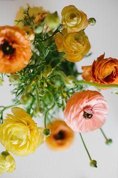 'Invariably Excites the Sensitive Soul' by Endlessly Enraptured #endlesslyenraptured #ranunculus #flowers