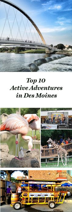 Des Moines caters to our desires to get moving with activities like rock climbing, trampolining, pedaling through the East Village and dancing. Top 10 active adventures: http://www.midwestliving.com/blog/travel/top-10-active-adventures-des-moines/
