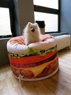 Foxy digs his cheeseburger bed...