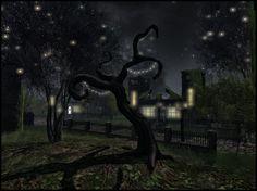 Blackmoor (Lokii Violet) ( e ) Explore, Street, Night, City, Cities, Walkway, Exploring