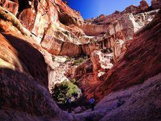 Nothing like tall canyon walls @CanyonlandsNPS, Utah to make you feel small..