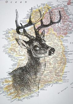 Deer Print on Map of Ireland 5 x 7 Irish Deer Head by CrowBiz. $15.00, via Etsy.