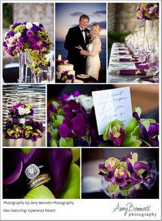 Your Wedding Color - Purple | Exclusively weddings, Weddings and Blog