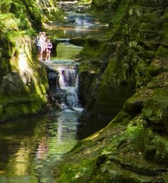 5. Pewit's Nest (Baraboo) is like something out of a fairy tale. Explore nature and swim in Wisconsin's best natural swimming hole.