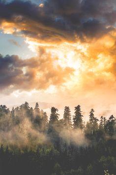 motivationsforlife:  Valley of Dreams  by Julianne Bonasera \\...