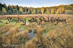 Standing With Puddleglum
