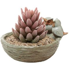 Amazon.com - Rustic Owls Modern Home Design Ceramic Plant Pot Flower Planter / Centerpiece Decorative Bowl - MyGift® -