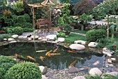 JAPANESE STYLE GARDEN POOL WITH KOI CARP PATIO COVERED BY PERGOLA CHELSEA 2002 WONDERFUL WORLD OF KOI DESIGNER R.DAY AND S.HICKLING BONSAIS RHODODENDRONS PEBBLES STONES