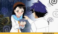 Nisekoi-anime-gif-Anime-onodera-kosaki-1212470.gif (500×281)