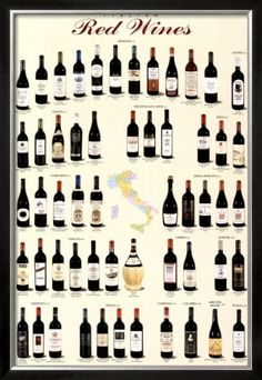 ~Italian Red Wines | House of Beccaria