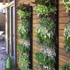 Modern and eco friendly Green wall design ideas include space saving decorative vertical displays, created with outdoor and indoor plants, and vertical gardens which offer great space saving solutions for growing vegetables and edible herbs. Green wall design looks not only very attractive, but bene