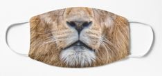 Animal Masks for kids and adults by Scar Design. Stay Safe in Style with cool Cloth Masks. Buy yours at my #redbubble store $16.76 *$13.41 when you buy 4+ #lion #animal #lions #beautiful #animals #kidsmask #clothfacemask #mask #facemask #clothmask #coronavirus #virusmask #covid19 #facemasks Animal Masks For Kids, Mask For Kids, Lion Face Mask, All Things Cute, Family Gifts, Stay Safe, Lions, Cool Stuff, Stuff To Buy