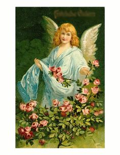 Angel in a Rose Garden Flowers Blooms. 8x10 by PreciousMemoriesOne