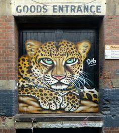 Deb, Melbourne Street Art Melbourne, Shutters, Beautiful Words, Australia, Doors, Artist, Animals, Blinds, Shades