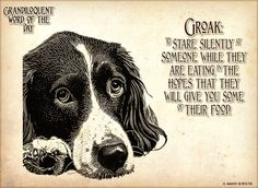 """(GROKE) Verb: -To stare silently at someone while they are eating, in the hopes that they will give you some of their food.  Used in a sentence: """"Would you tell your toddler to stop groaking at me?!"""""""
