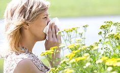 Immer mehr Menschen leiden unter einer Allergie. Wodurch dieses wichtige Abwehrsystem aus dem Gleichgewicht gerät und wie Sie einer Allergie natürlich entgegnen können, erklären wir in diesem Artikel