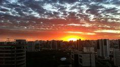 Poesias de São Paulo. Em São Paulo.