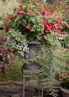 particularpoetry:    Gardens@ Pinterest