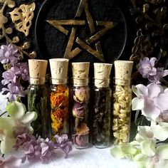 Ritual herbs in bottles, Pagan Wiccan Sacred Herbs and Flowers in glass Vials,  Witchcraft,  Magical herbs