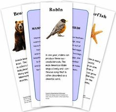 FREE Educational Printables for Kids! -animal classification cards. Thanks thefrugalgirls.com for the tip. #education #homeschool #animals