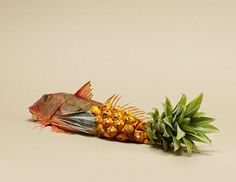 Fruit Mashups - Amsterdam-based photographer Rene Mesman does some rather interesting things with food.