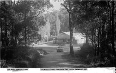 Tremont General Store through the trees