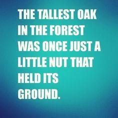 A Little Nut That Held It's Ground!