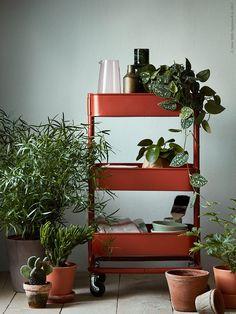RÅSKOG roltafel | Deze pin repinnen wij om jullie te inspireren. IKEArepint IKEA IKEAnederland opbergen planten decoratie woonkamer accessoires groen handig opberger inspiratie wooninspiratie