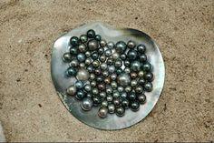 bijoux-de-la-mer-st-barts-