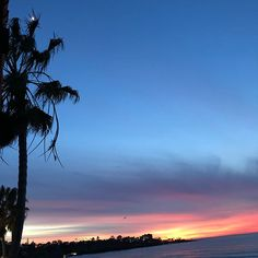 I'm leaving a piece of my soul in  La Jolla. #lajolla #lajollashores #lajollashoreshotel #lajollalife #lajollacove #california #californialove #californiagirl #native  #dontwanttoleave #imissyou #californiagirlinacoloradoworld #iwanttomoveback #noidont #shityesido #tiredofthecold #tiredofsnow #sunset #sunsets #sunset_ig #sunsetsky #sunset🌅 #sunsetporn #sunset_pics #happy #content #travel #travelwithkids #lajollalocals #sandiegoconnection #sdlocals - posted by Malisa Miller Eakins…