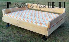 10. Dog Bed