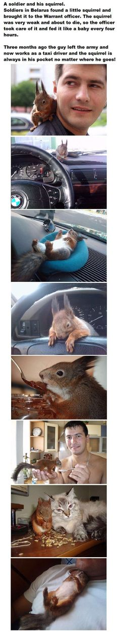 And this is pretty much the number one thing on my bucket list: have a pet squirrel. SO PRECIOUS.