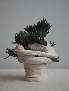 Zhu Ohmu's Coiled Ceramics. Standing vessel with twisted torso , 2016 Ceramic with Crassula Gollum Ikebana, Cerámica Ideas, Sculptures Céramiques, Ceramic Sculptures, Pottery Sculpture, Coil Pots, Kintsugi, Ceramic Design, Ceramic Pottery