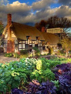 Anne Hathaway's childhood cottage - she became Shakespeare's wife. So pretty!