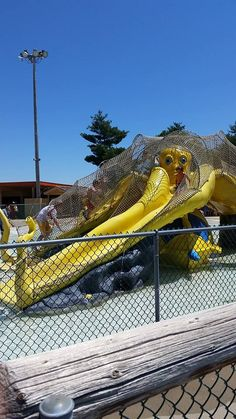 Octo Explorer is a whirl of fun for the kids! Located in a safe area near The Wave wavepool.