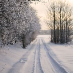 snowy quiet country roads