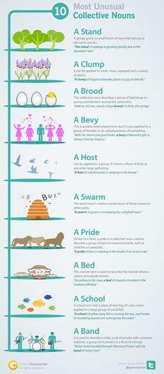 10 Collective Nouns