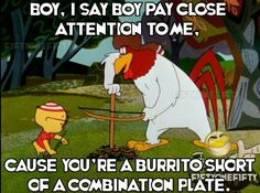 """Foghorn Leghorn - """"Boy, I say boy, pay close attention to me, 'cause you're a burrito short of a combination plate."""""""