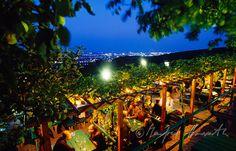Gastgarten des Heurigen Sirbu mit Blick auf Wien Garden Bar, Vienna Austria, Vineyard, Places To Visit, Fair Grounds, Travel, Outdoor, Wineries, Switzerland