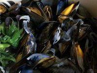 Moules - Recettes de moules (marinière, poulette, velouté, gratin)