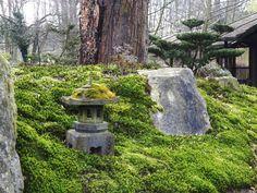 kokeniwa | japanische Gartengestaltung | Dipl.-Ing. (FH) Heiko Voß, Landschaftsarchitekt AKNDS