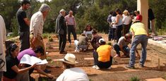 Gaspar Caballero De Segovia - Método de cultivo ecológico - Parades en Crestall - Huerto Ecológico