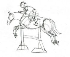 the preliminary structural sketch of horse and rider