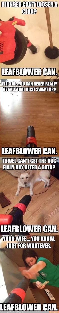 Leaf blower can do anything / iFunny :)