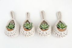 This pattern is written in Standard American Terms and rated Advanced Beginner. Diy Crochet Patterns, Crochet Basket Pattern, Crochet Designs, Succulent Hanging Planter, Hanging Planters, Crochet Plant Hanger, Small Succulents, Crochet For Beginners, Plant Holders