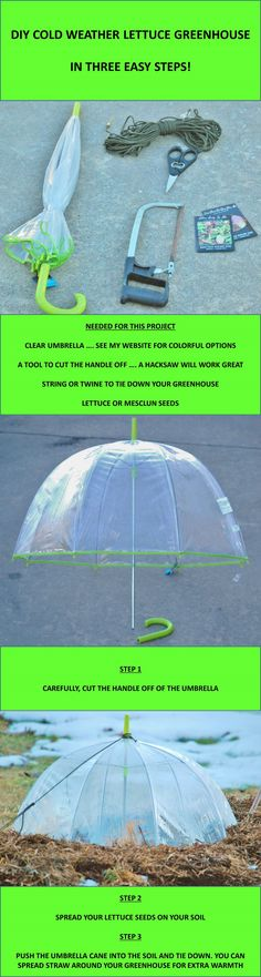 Recycle an old umbrella for a DIY Greenhouse in three easy steps!