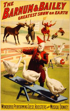 The Barnum & Bailey Greatest Show on Earth - Wonderful Performing Geese, Rooster and Musical Donkey - Vintage Circus Poster Vintage Circus Posters, Vintage Circus Photos, Old Posters, Images Vintage, Travel Posters, Carnival Posters, Vintage Carnival, Poster A3, Retro Poster