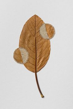 Dried Leaves Crocheted into Delicate Sculptures by Susanna BauerAt the intersection of thread, leaves, and her steady hands, artist Susanna Bauer (previously here and here) produces miraculous little. Land Art, Dry Leaf Art, Crochet Leaves, Leaf Crafts, Colossal Art, 3d Studio, Textiles, Art Textile, Labor