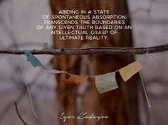 """Abiding in a state of spontaneous absorption transcends the boundaries of any given truth based on an intellectual grasp of ultimate reality."" #meditation #awakening #kundalini #samadhi"